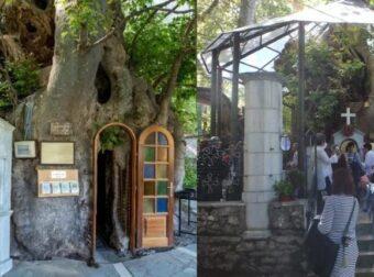 Το ομορφότερο Εκκλησάκι της Παναγίας, «κρύβεται» μέσα σε έναν πλάτανο 1000 ετών